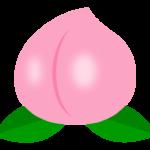 かわいい桃のイラスト