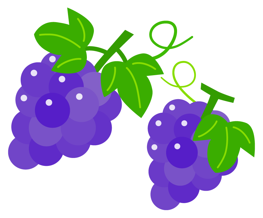 葉っぱが付いたぶどう(葡萄)のイラスト