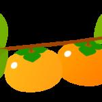 枝と柿のイラスト