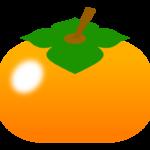 四角い柿のイラスト