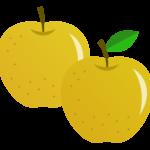 梨(2つ)のイラスト