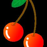 葉っぱが付いたさくらんぼのイラスト