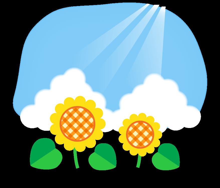 青空とかわいいヒマワリ(向日葵)のイラスト