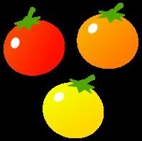 カラフルなミニトマトのイラスト