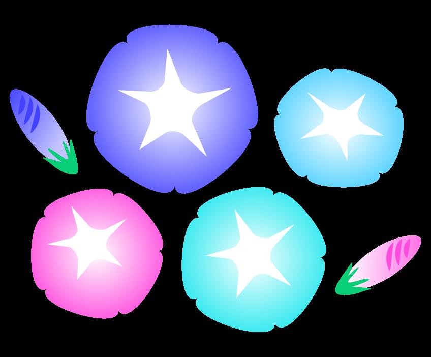 朝顔の花とつぼみのイラスト