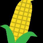 トウモロコシのイラスト