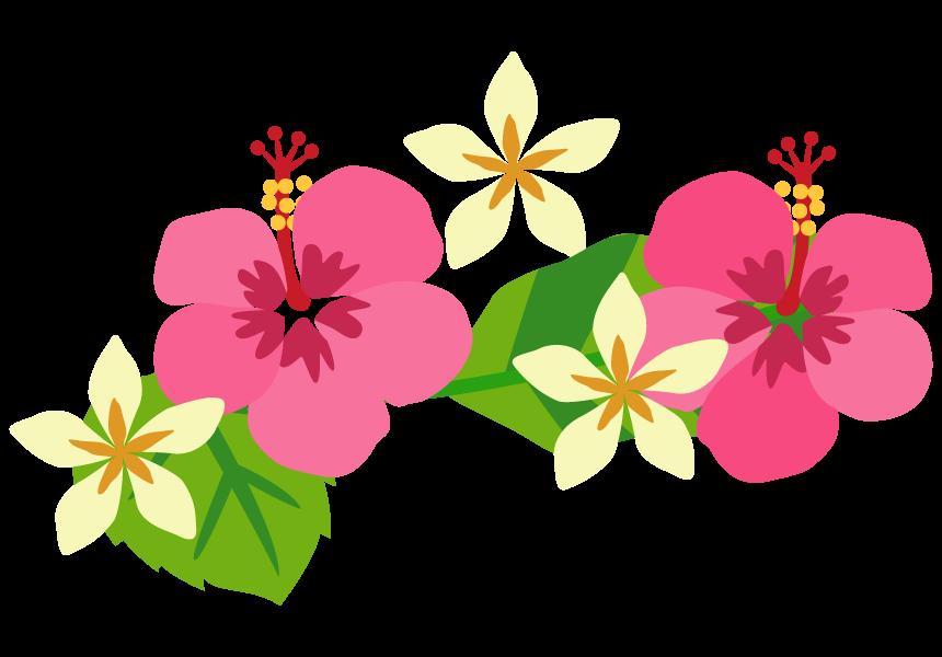 ピンク色のハイビスカス 二輪 のイラスト 無料のフリー素材 イラストエイト
