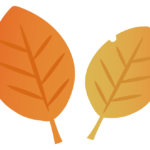 紅葉・枯葉のイラスト02