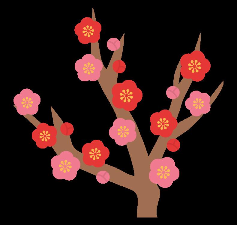梅の木と梅の花のイラスト