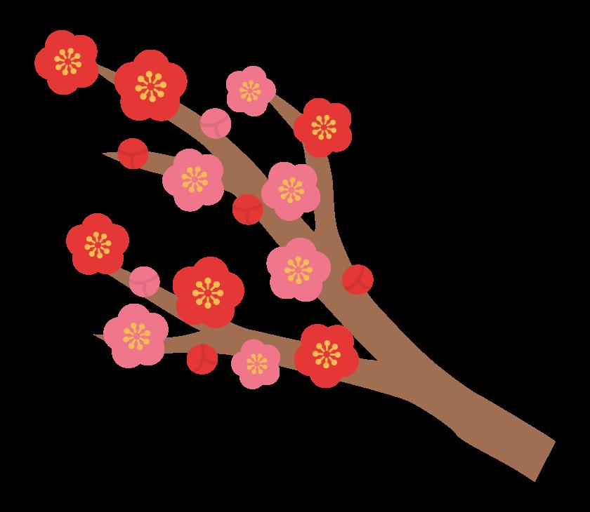 梅の木と梅の花のイラスト02
