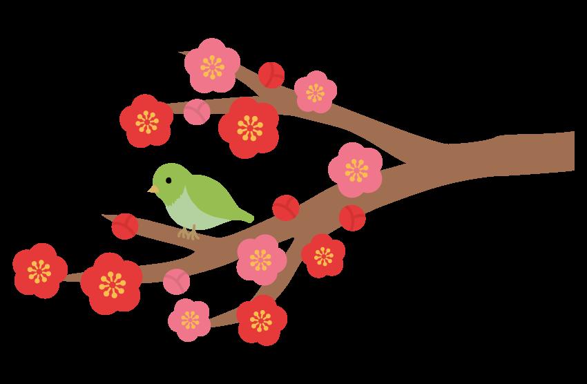 梅と鶯(うぐいす)のイラスト02