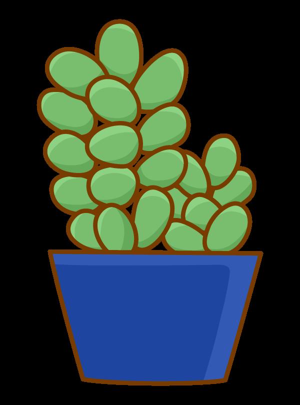 多肉植物のイラスト02