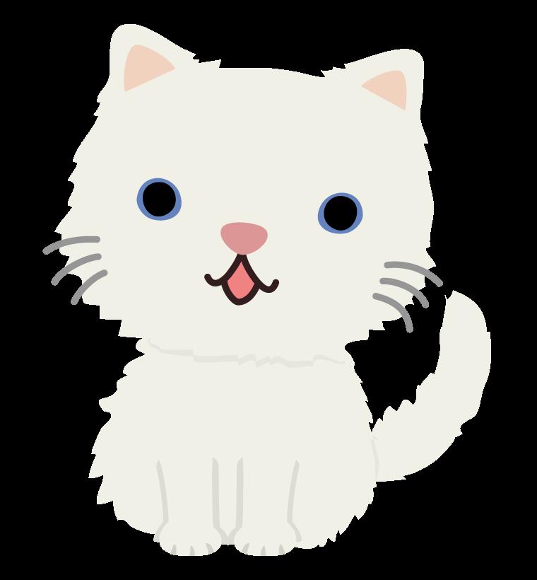 かわいい白猫のイラスト