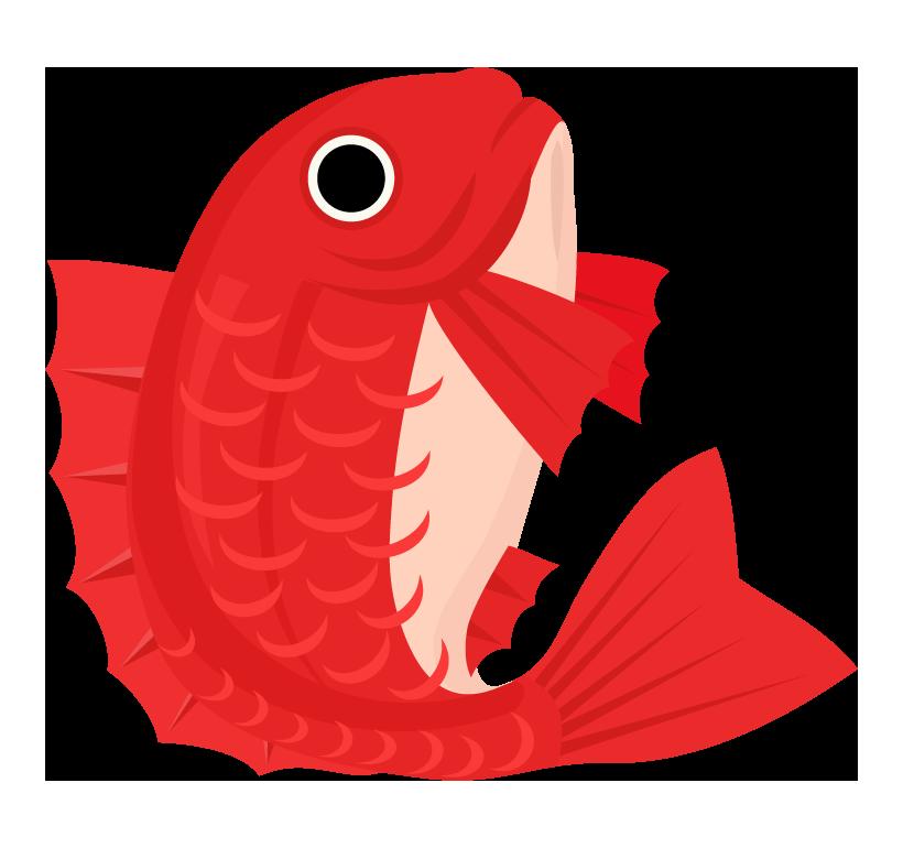 お祝い・鯛のイラスト