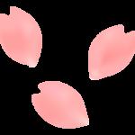 春・桜の花びらのイラスト