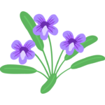 すみれの花のイラスト