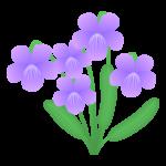 春・すみれの花のイラスト