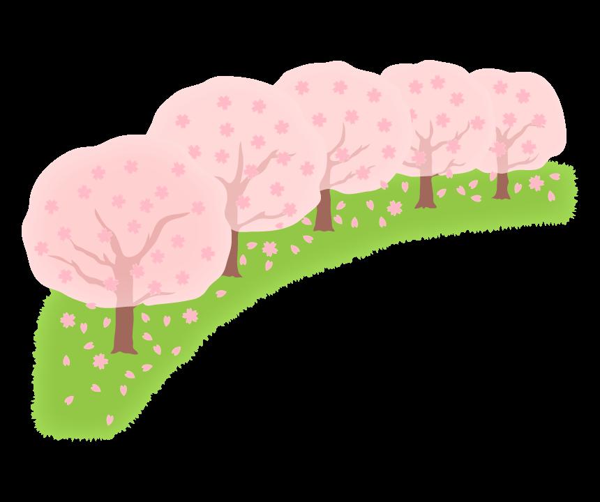 春・桜並木のイラスト