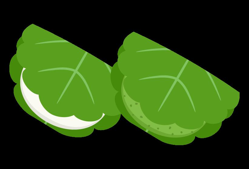 柏餅(よもぎ)のイラスト