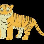 動物・虎のイラスト