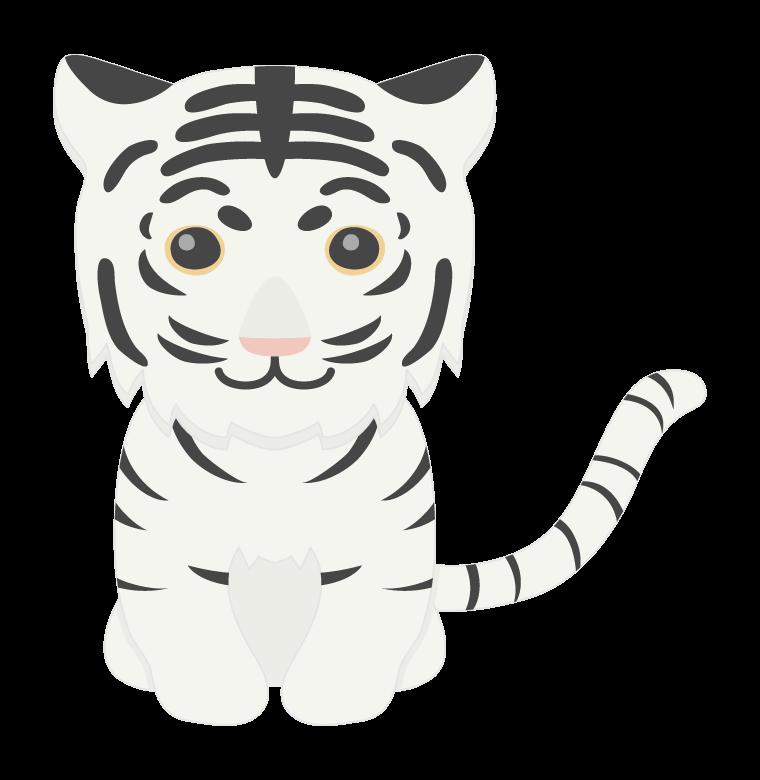 ホワイトタイガーの赤ちゃんイラスト