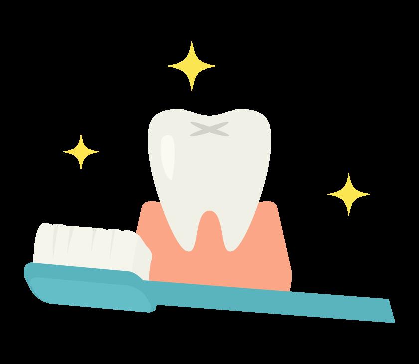 歯の手入れ・歯磨きのイラスト