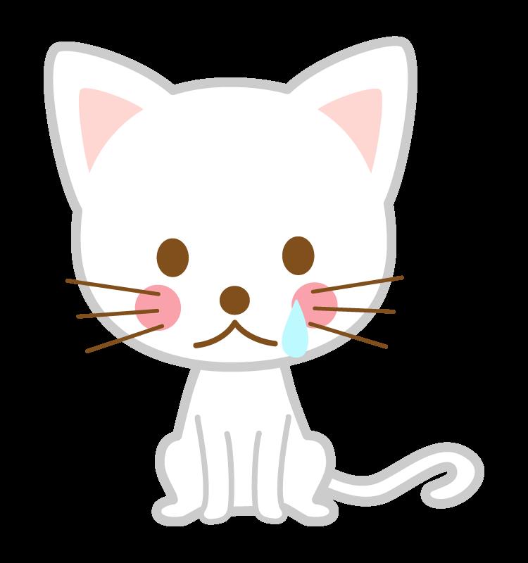 悲しんでいる白猫のイラスト
