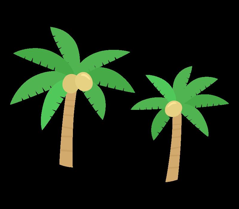 南国のヤシの木のイラスト02