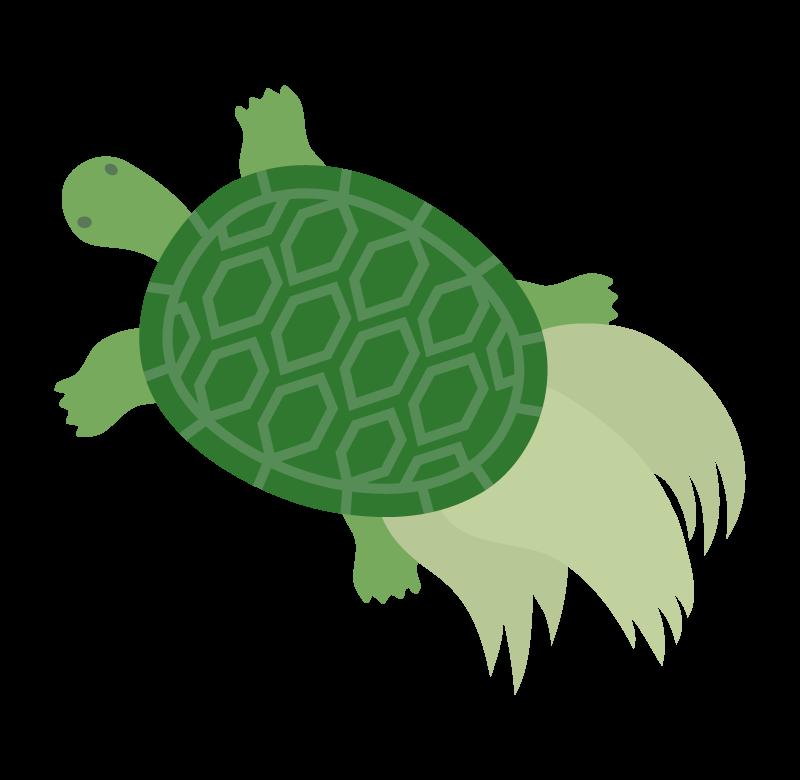 縁起物の亀のイラスト02