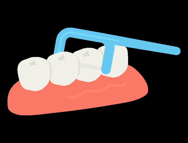 歯間ブラシのイラスト