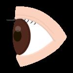 横からのアングルの目のイラスト