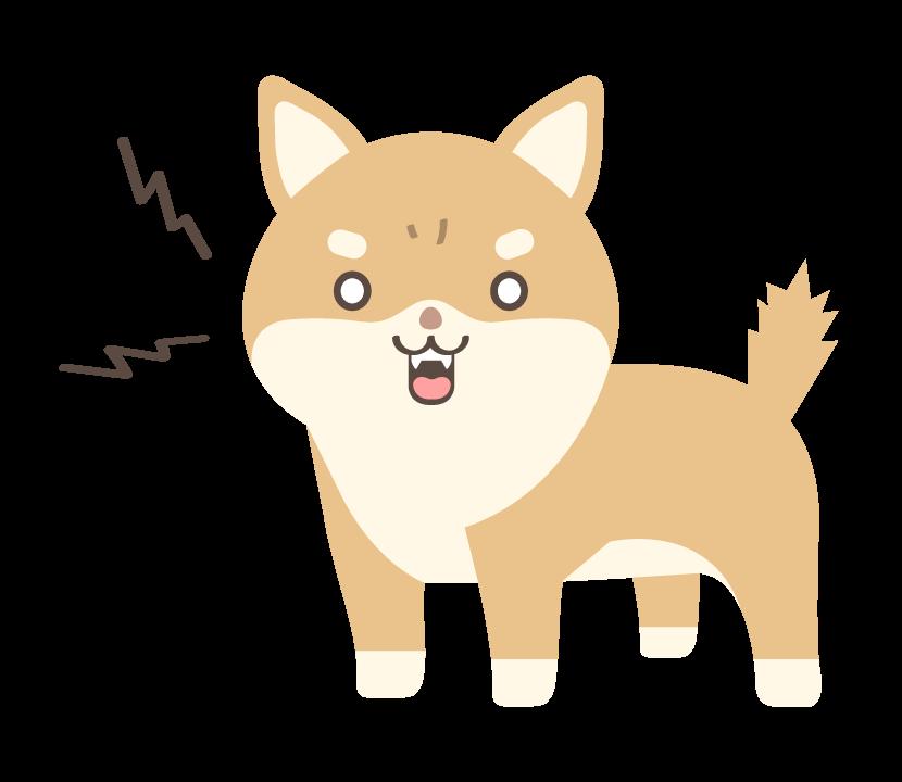 吠えている柴犬のイラスト