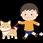 楽しく散歩している柴犬と男の子のイラスト