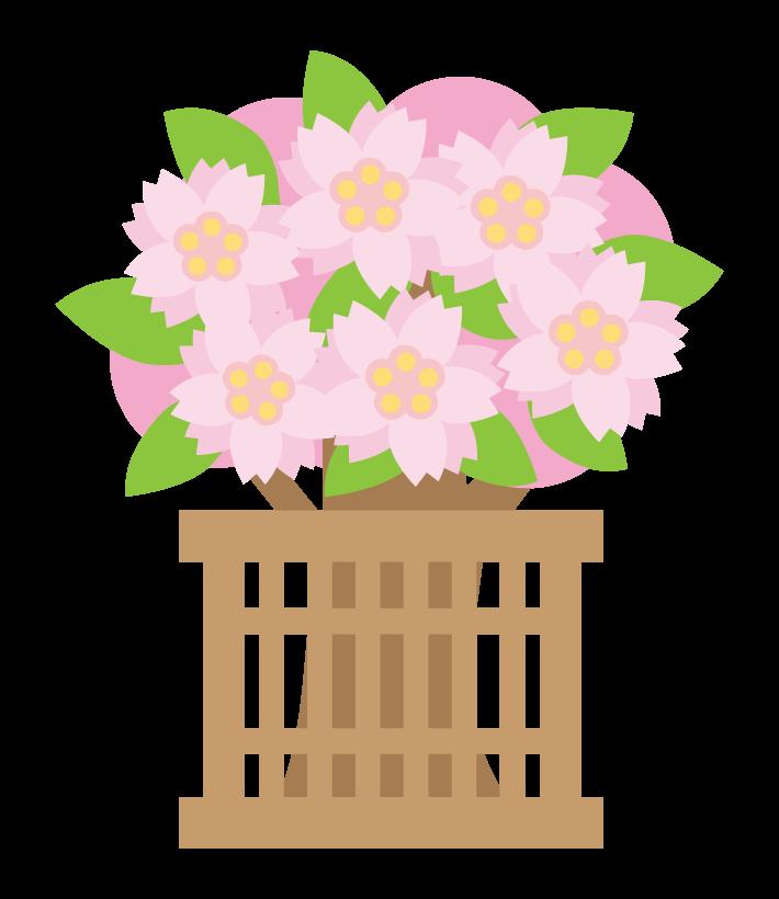 ひな祭りの桃の花のイラスト