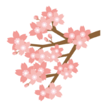 枝と桜のイラスト02