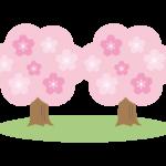 シンプルな二本の桜の木のイラスト