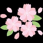桜の花びらのイラスト02