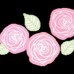 手書き風のピンク色のバラ(薔薇)のイラスト