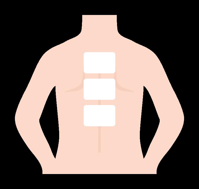 背中と湿布のイラスト