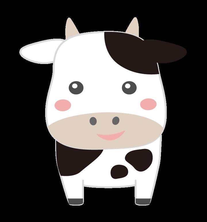 かわいい牛(正面)のイラスト