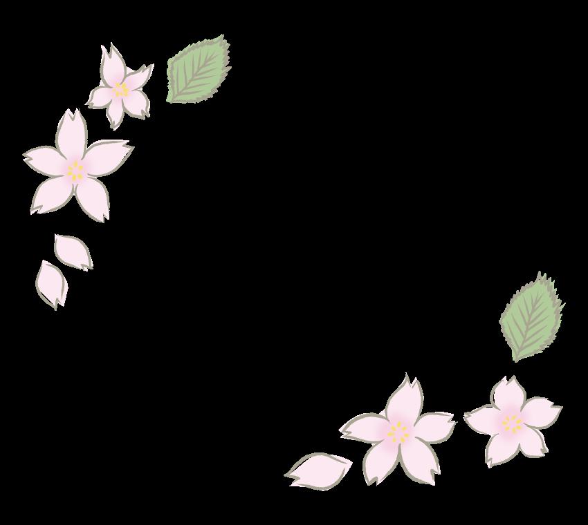 手書き風のシンプルな桜のフレーム・飾り枠のイラスト