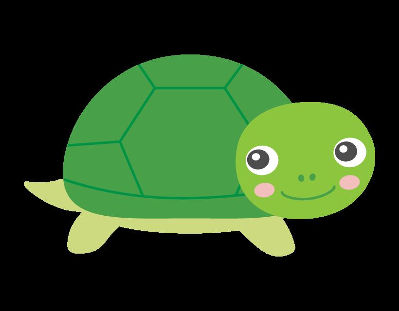 振り向いているかわいい亀のイラスト
