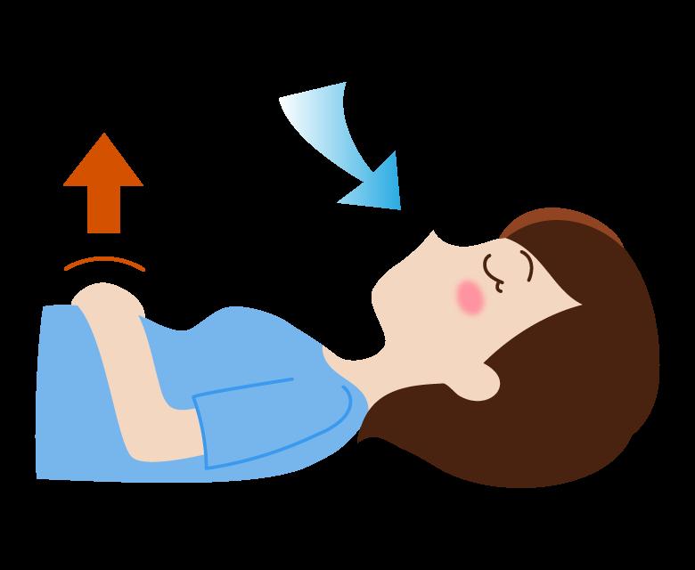 腹式呼吸(息を吸う)のイラスト