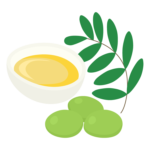 オリーブの実とオリーブオイルのイラスト