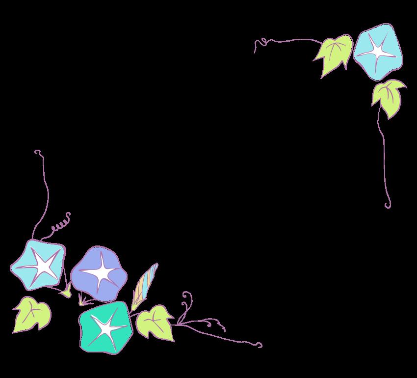 手書き風の朝顔のフレーム・飾り枠のイラスト