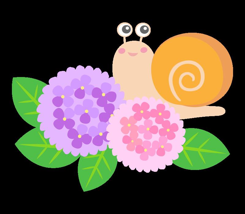 カタツムリと紫陽花のイラスト