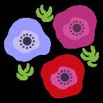 カラフルなアネモネの花のイラスト