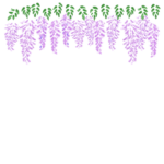 手書き風の藤の花の上段フレーム・飾り枠のイラスト