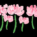 手書き風の蓮華の花のイラスト