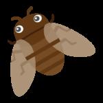 飛んでいる蝉(セミ)のイラスト